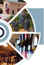 Planeta Sicilian week - wine dinner series | March 2019 (SAIGON)