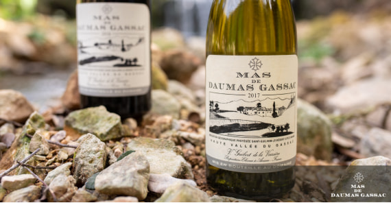 What makes Mas de Daumas Gassac wines different?