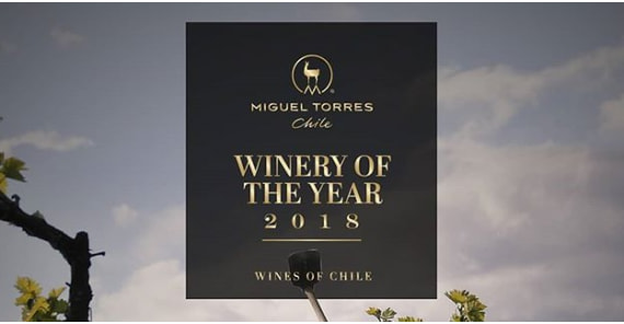 Miguel Torres Chile voted vineyard of the year 2018