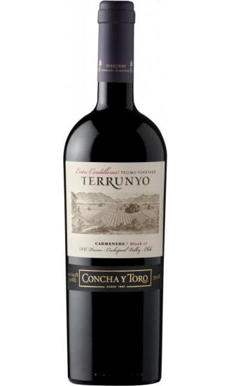 Terrunyo Carmenere Block 27, by Concha y Toro, Central Valley
