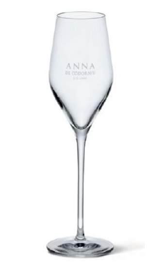 GLASSES ANNA BCN - WPA10499 TRANSPARENT BARCELONA MARKED